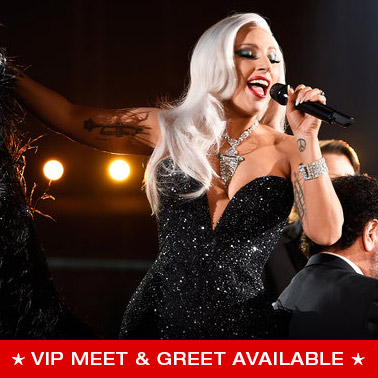 Vip packages and tickets concert premiumseatsusa lady gaga m4hsunfo