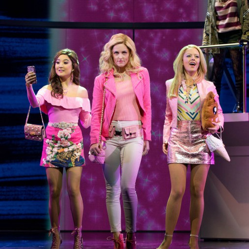 Vip packages for mean girls tickets musical play mean girls tickets m4hsunfo