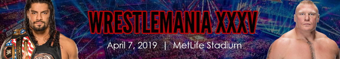 Wwe vip packages tickets premium seats usa looking for a specific wwe event choose one of these top wwe events or click here to shop all m4hsunfo